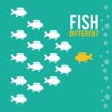 Fish figure design Royalty Free Stock Image