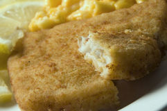 Fish filet macaroni and cheese. Fish filet breaded alaskan pollock macaroni and cheese dinner lemon garnish stock photo