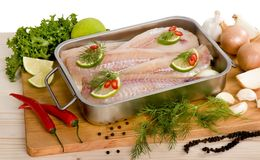 Fish filets Royalty Free Stock Images