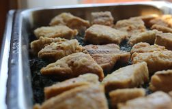Fish Filets Stock Images