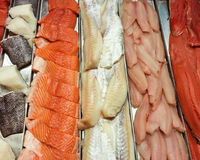 Fish Filets for Sale Royalty Free Stock Photos