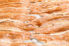 Fish fillet. Stock Images