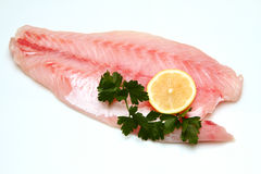 Fish fillet. On white background Stock Photo