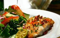 Fish Fillet. With garlic sauce and garden fresh salad royalty free stock photo