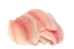 Fish fillet stock photography