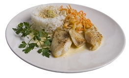 Fish Fillet And Rice On A Plate Royalty Free Stock Photography