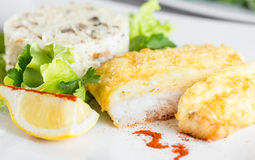 Fish fillet baked with cheese and risotto Stock Image