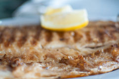 Fish fillet on barbecue with lemon. Grilled fish fillet on barbecue with lemon - Boga Leporinus obtusidens royalty free stock photos