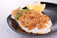 Fish fillet cooked with crumb Stock Photography