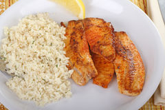 Fish Fillet Dinner. With rice and lemon slice Stock Photo