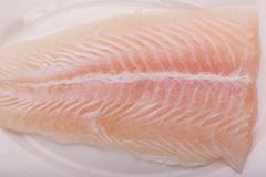 fish fillet stock image