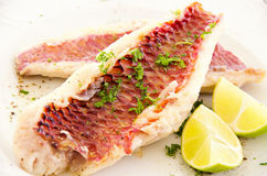 Fish Fillet with Fresh Herbs Royalty Free Stock Images