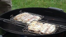 Fish fillet on grill stock video