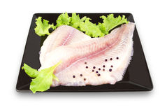 Fish fillet with herbs Royalty Free Stock Photography