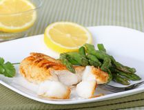 Fish Fillet Meal Stock Image