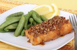Fish Fillet Meal Royalty Free Stock Photography