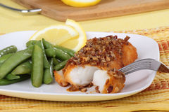 Fish Fillet Meal Royalty Free Stock Photo