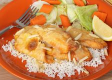 Fish Fillet on Rice Royalty Free Stock Photography