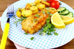 Fish fillet with rosemary potatoes, vegetables Royalty Free Stock Photography