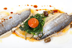 Fish fillet of sea bass Stock Images