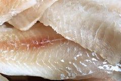 Fish fillet texture Stock Photos