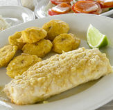 Fish fillet tostones Corn Island Nicarauga Royalty Free Stock Image