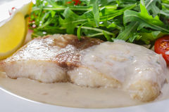 Fish fillet in white sauce Royalty Free Stock Images
