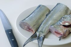 Fish filleting. Fresh ribbon fish and a filleting knife Royalty Free Stock Image