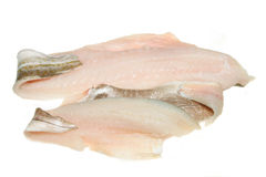 Fish fillets. Cod and haddock fish fillets isolated on white stock photos