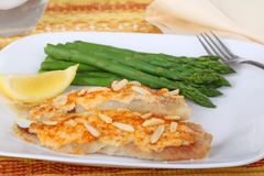 Fish Fillets and Asparagus Royalty Free Stock Images