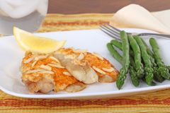 Fish Fillets and Asparagus Royalty Free Stock Image