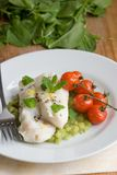 Fish fillets with cooked tomatoes Stock Photography