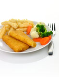 Fish fillets dinner Royalty Free Stock Photos
