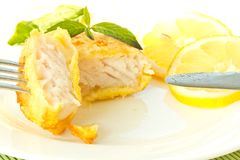 Fish fillets fried in batter Stock Images