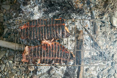 Fish fillets grilling on hot open fire coals Stock Image