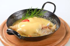 Fish fillets with Hollandaise sauce Stock Photos