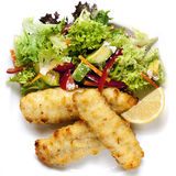 Fish Fillets and Salad. Baked fish fillets with a healthy salad Royalty Free Stock Photo