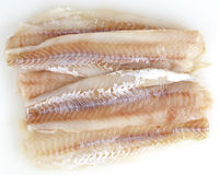 Fish fillets on white Royalty Free Stock Photo