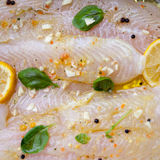 Fish fillets. Wiith olive oil, basil and lemon ready to be cooked Royalty Free Stock Photo
