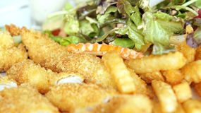 Fish fingers with salad royalty free stock image