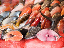 Fish at a fish market Royalty Free Stock Image