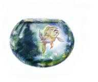 Fish And Fishbowl Stock Photo