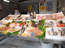 Fish on fishmonger's slab. Variety of fresh fish in a fishmonger in Rome Royalty Free Stock Image