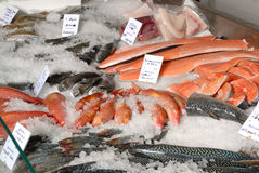 Fish on fishmonger's slab Stock Photography