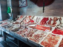 Fish on fishmonger`s slab in Fiumicino port in Italy. Various types of fresh fish in a fishmonger in the port of Fiumicino near Rome. Fiumicino is a small port stock photo