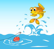 Fish and float. Fish jumps out of water and sees a float Royalty Free Stock Photos