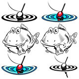 Fish and float. Illustrations of the two fish and floats Royalty Free Stock Photography