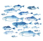 Fish flock isolated on white background. Watercolor hand drawn illustration Stock Image