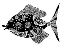 Fish with floral elements. Hand drawn vector fish with floral elements in black and white doodle style. Pattern for coloring book Royalty Free Stock Images