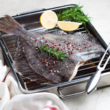 Fish flounder Stock Images